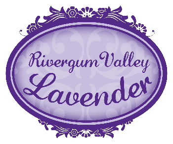 Rivergum Valley Lavender